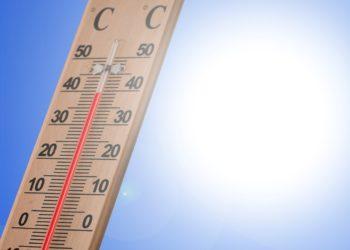 """Mit Temperaturen bis zu 40 Grad Celsius kommen die """"Hundstage"""" heuer ungewöhnlich früh (Foto: pixabay, license free)."""