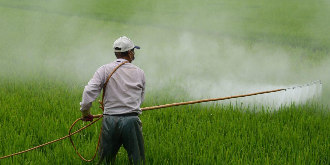 Das Herbizid Glyphosat gilt gesundheitlich als höchst umstritten. (Foto: Pixabay)