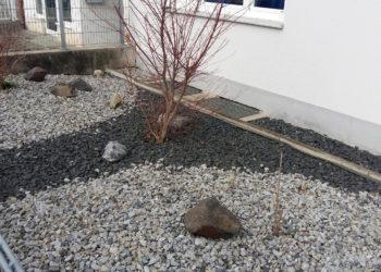 """Dieser """"Garten des Grauens"""" befindet sich im Vorgarten einer Hausverwaltung im oberbayerischen Freising (Foto: W.Seemann)"""