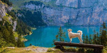 In der Schweiz denkt man schon darüber nach, wer die Kosten von Corona alles bezahlen könnte. Hier ein Schweizer Bergsee. (Bild: pixabay.com free)
